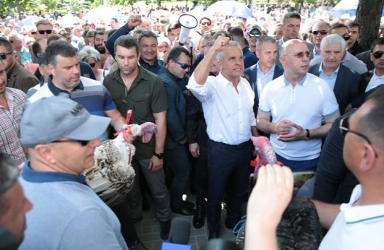 Сапу в руки: яловенцы не поехали в Кишинев метать индюков, а предпочли прополоть кукурузу