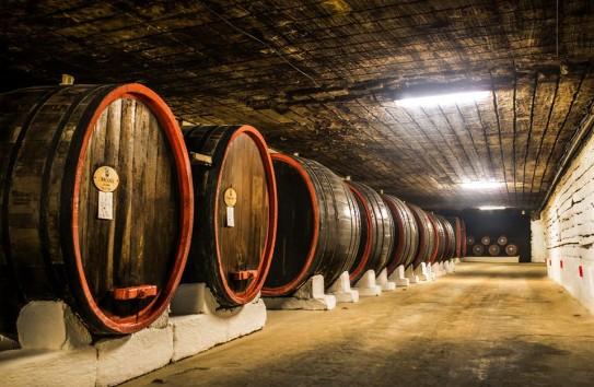 Крикова и населенный пункт в Испании названы европейскими городами вина