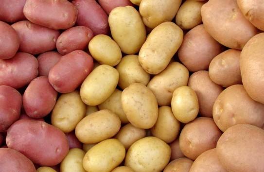 Украина начала импортировать картофель из России и экспортировать его в Молдову
